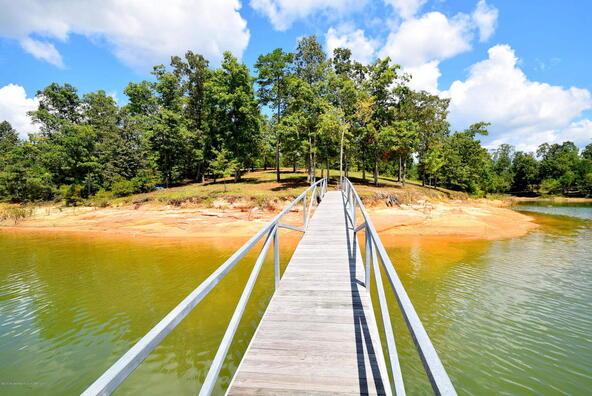 75,76,77 Stoney Pointe Landing, Double Springs, AL 35553 Photo 6