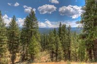 Home for sale: Lot 3 Four Pines Rd., Idaho City, ID 83631