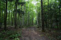 Home for sale: 30 N. Big Buck Trail, Pickford, MI 49774
