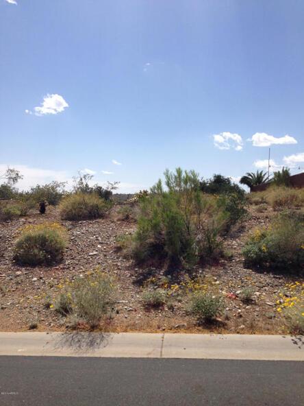 15743 E. Robin Dr., Fountain Hills, AZ 85268 Photo 4