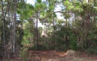 Home for sale: 783 Memorial Dr., Sebring, FL 33870