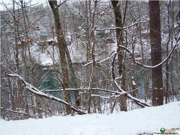 1226 County Rd. 106, Mentone, AL 35984 Photo 7