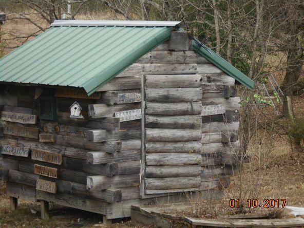 171 Polk Rd. 32, Cove, AR 71937 Photo 4