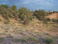 Home for sale: 4125 N. Antigua Way, Rimrock, AZ 86335