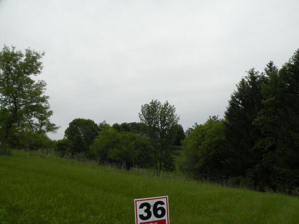 Lot 36 Drumlin Loop, Ripon, WI 54971 Photo 4
