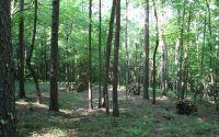 Home for sale: Lt11 Creek Camp Rd., Ellijay, GA 30536