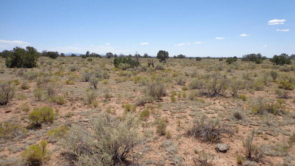 4768 South Rim Ranch Rd., Williams, AZ 86046 Photo 32