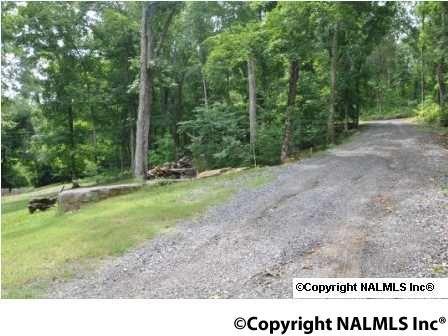 580 Howell Rd., Guntersville, AL 35976 Photo 30