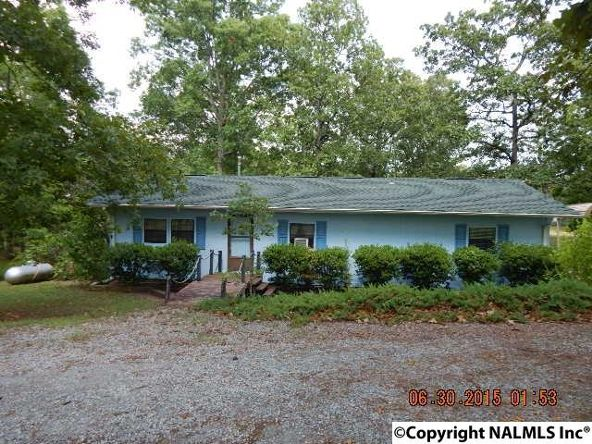 95 County Rd. 604, Cedar Bluff, AL 35959 Photo 2