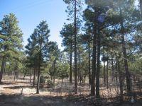 Home for sale: 2625 Roundup Ln., Happy Jack, AZ 86024