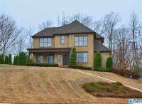 Home for sale: 133 Dunstan Dr., Birmingham, AL 35242