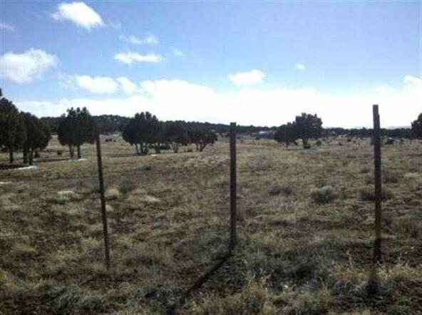 5 Or 10 Ac Turkey Lake Rd., Show Low, AZ 85901 Photo 12