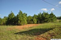 Home for sale: 0 Capshaw Rd., Harvest, AL 35749