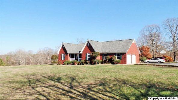278 County Rd. 557, Grove Oak, AL 35975 Photo 14