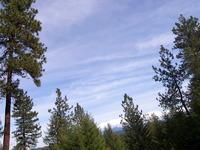 Home for sale: E. Emily Ln., Spokane, WA 99208