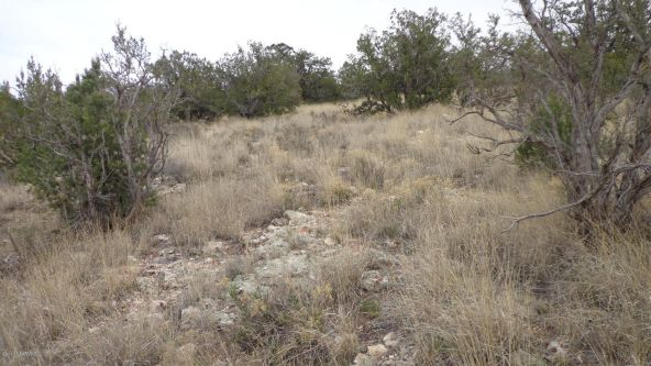 952 Bridge Canyon Unit 5 Lot 952, Seligman, AZ 86337 Photo 15