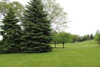 Home for sale: 1035 North Jamey Ln., Addison, IL 60101