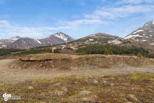 9820 Meadow Rd., Anchorage, AK 99516 Photo 16