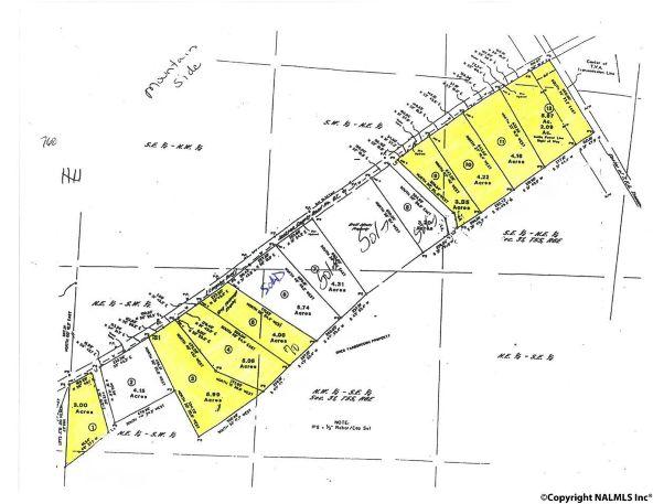 3 County Rd. 67, Langston, AL 35755 Photo 2