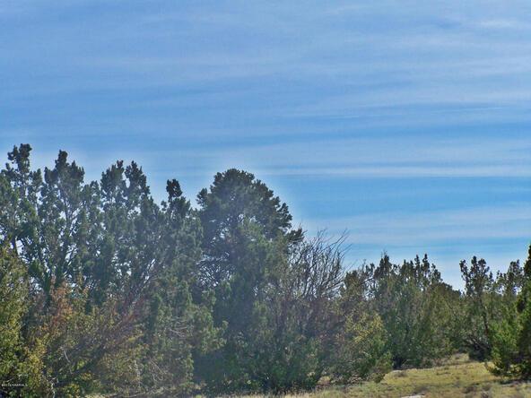 9262 W. Bandera Pass, Williams, AZ 86046 Photo 4