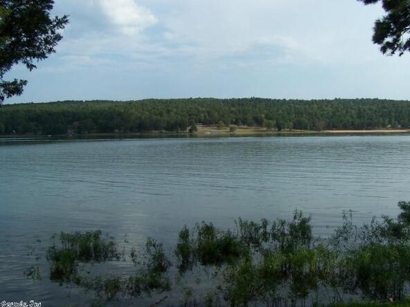 2 Piney Bay Rd., Lamar, AR 72845 Photo 1