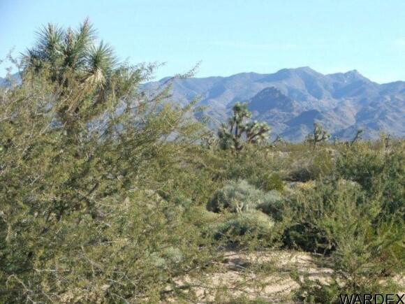3529-A Arroyo Rd., Yucca, AZ 86438 Photo 7