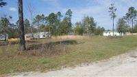 Home for sale: 339 N.E. Kel Ln., Lee, FL 32059