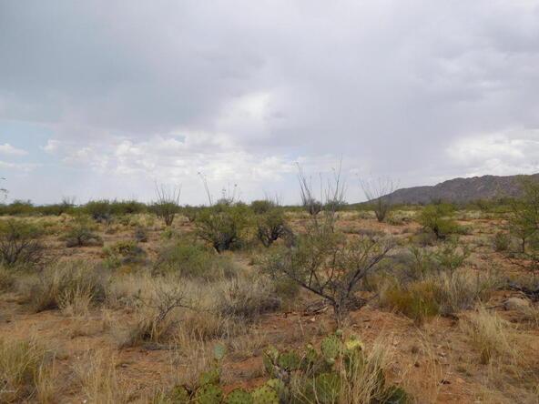 16705 S. Sierrita Mountain, Tucson, AZ 85736 Photo 4