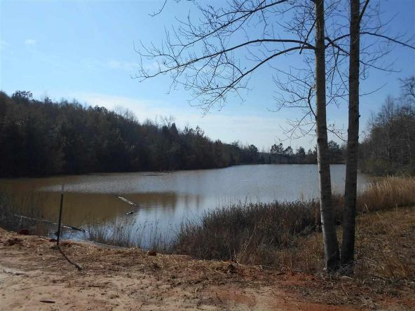 16.9 Acres Private Rd. 1363, Ariton, AL 36311 Photo 14