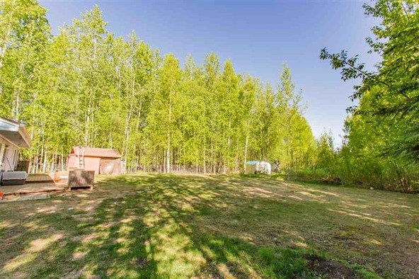 3420 Sharon Rd., North Pole, AK 99705 Photo 14