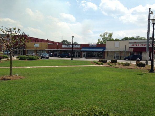 111 W. Mill St., Hartford, AL 36344 Photo 13