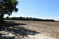 Home for sale: 49.35 Ac Basin Refuge Rd., Lucedale, MS 39452