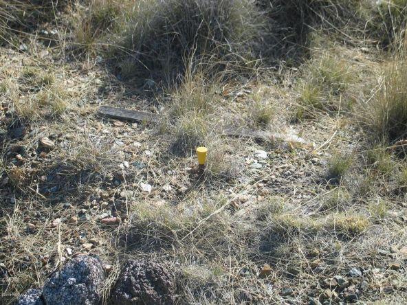12431 Caballo Terrace, Mayer, AZ 86333 Photo 46