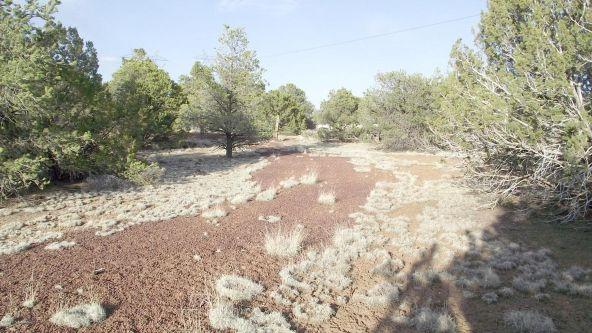 12498 N. Chino Rd., Williams, AZ 86046 Photo 17