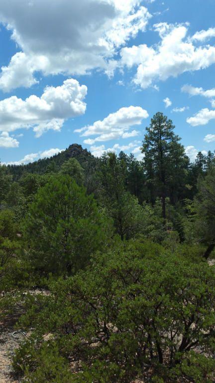 700 S. Monument Valley Dr., Payson, AZ 85541 Photo 30