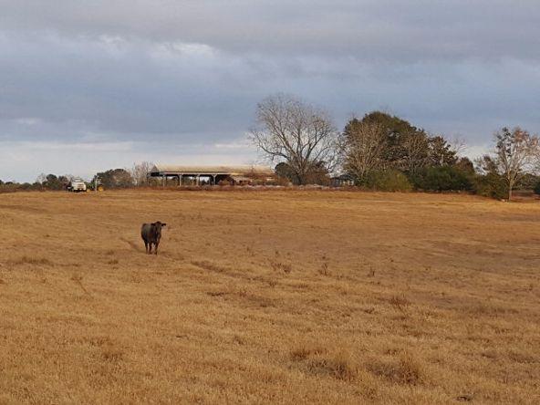279 County Rd. 469, Kinston, AL 36453 Photo 27