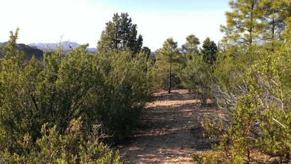 901 S. Skyview Dr., Prescott, AZ 86303 Photo 4