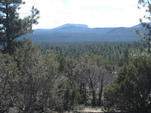 40.88 Acre Of 106-36-034-I, Vernon, AZ 85940 Photo 1