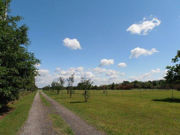 29320 County Rd. 32, Elberta, AL 36530 Photo 87