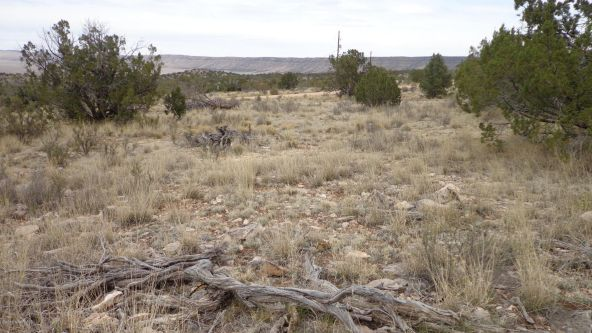 952 Bridge Canyon Unit 5 Lot 952, Seligman, AZ 86337 Photo 7