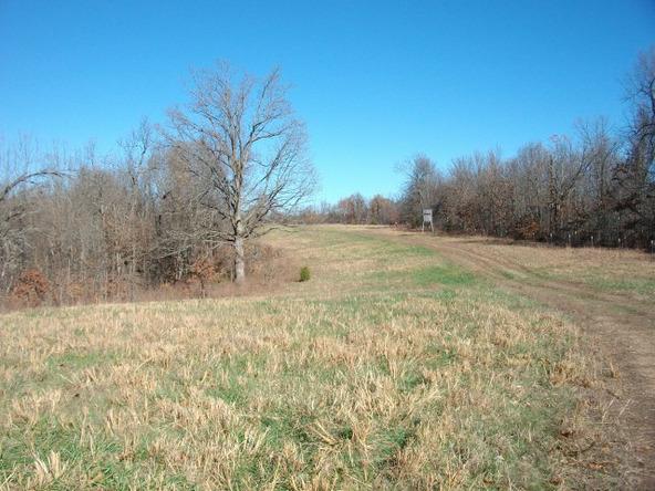 1059 Pleasant Run Rd., Mammoth Spring, AR 72554 Photo 21