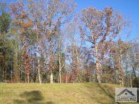 Home for sale: 1906 Ryland Hills Dr., Watkinsville, GA 30677