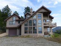 Home for sale: 37811 Twin Kopie Dr., Buena Vista, CO 81211
