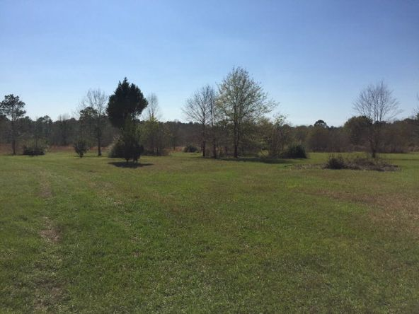 25284 Coopers Cem Rd., Robertsdale, AL 36567 Photo 2