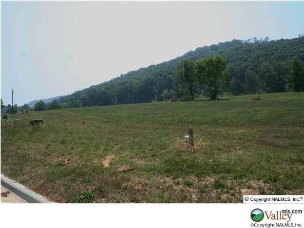 101 Lake Creek Dr., Guntersville, AL 35976 Photo 2