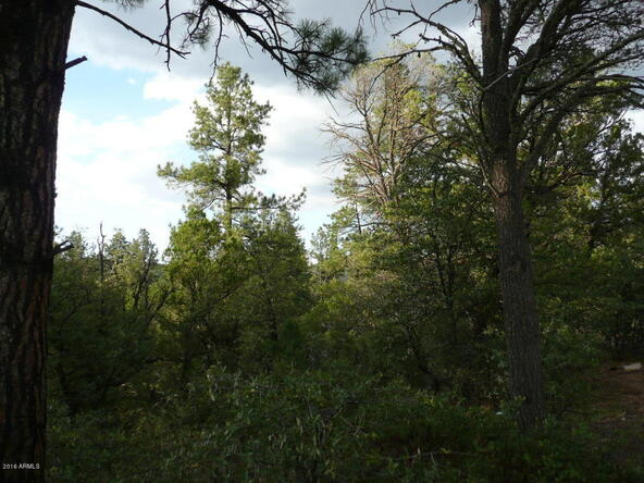 8b N. Chamberlain Trail, Young, AZ 85554 Photo 6