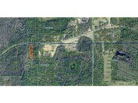 Home for sale: Deen Still Rd. E., Polk City, FL 33868