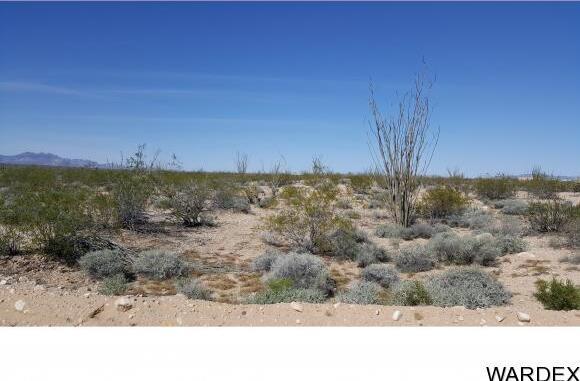 4332 W. Sunset Rd., Yucca, AZ 86438 Photo 14