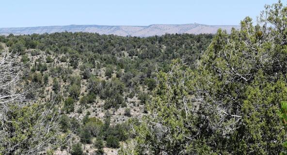 264 Sierra Verde Ranch, Seligman, AZ 86337 Photo 20