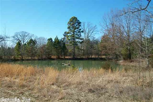 125 Stark Rd., Greers Ferry, AR 72067 Photo 7
